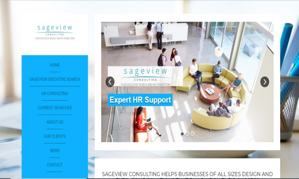 Before picture of the Sageview Consulting Website